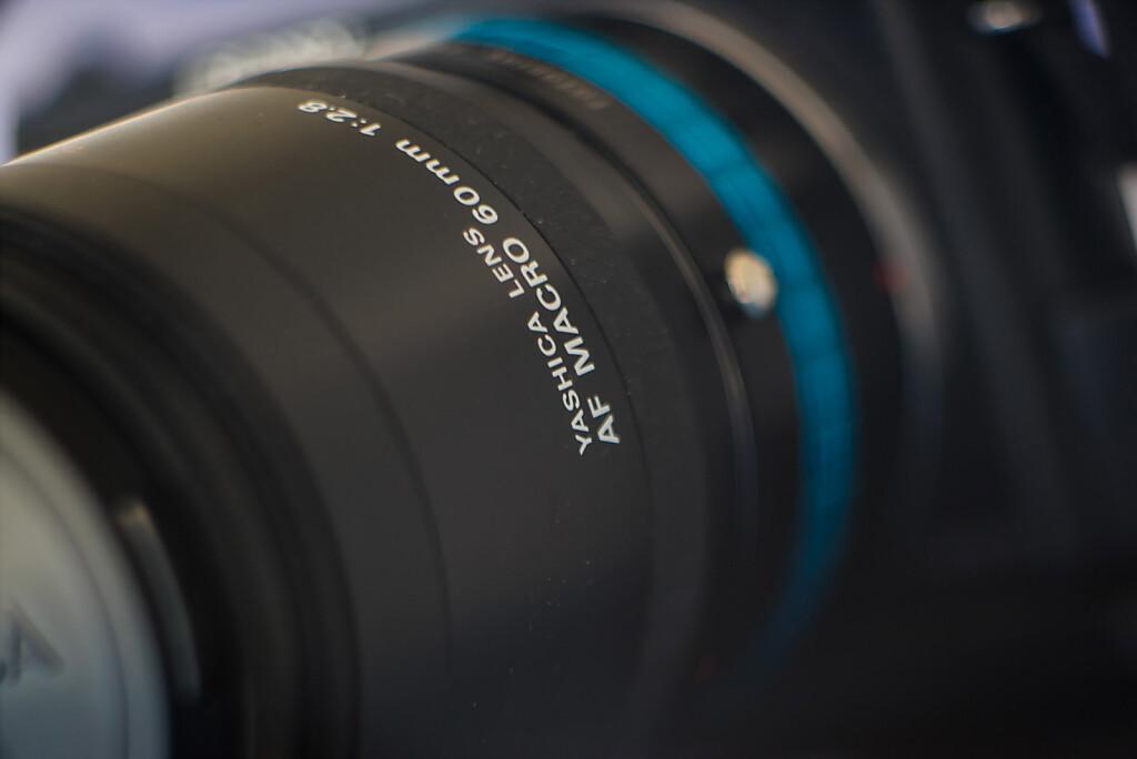 Psuedo Macro - Close Focus - Rollei Heidosmat 150mm f/3.5 Projection lens